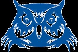 Doss Owls